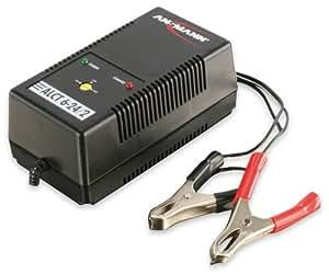 Ansmann 5207333 - ALCT 6-24/2 cargador de vehículos para baterías de automóviles, motos, motocicletas, baterías de plomo-gel de plomo 12V 24V 6V