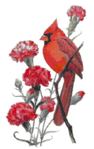 Ohio State Bird (Northern Cardinal) and Flower (Scarlet Carnation) Counted Cross Stitch Pattern