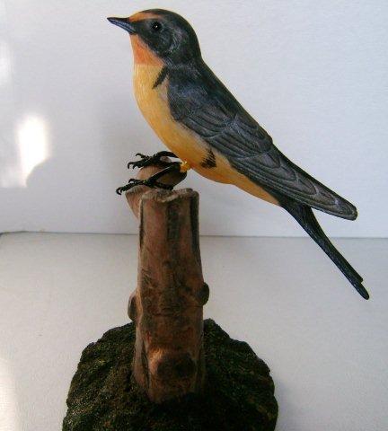 Barn Swallow on Stump