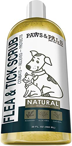 Paws & Pals Flea and Tick Shampoo-Conditioner Scrub for Dogs & Cats - Moisurizes, Deodorizes, Detangles Fur Coat (Flea & Tick), 20 FL oz