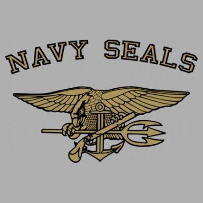 Sudadera con capucha de mujer Navy Seals Coat of Arms by Shirtcity Gris granulado