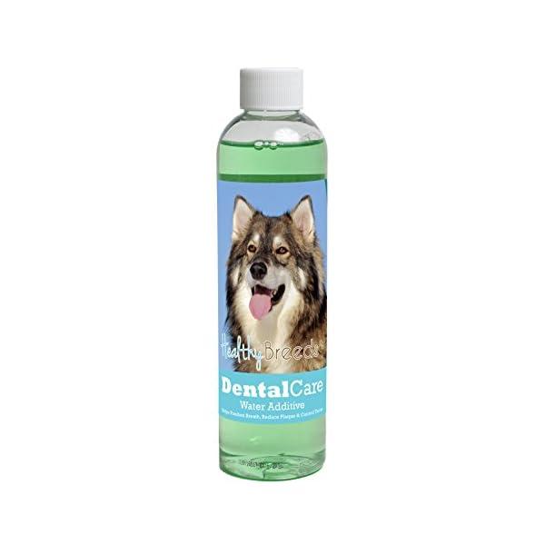 Healthy Breeds Dental Care Water Additive - Helps Freshen Breath, Reduce Plaque & Control Tartar - Veterinarian Formulated - Over 200 Breeds - Mint Flavor - 8 oz 1