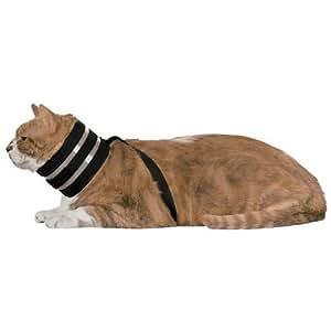 """Amazon.com : BiteNot Cat Collar, 2.5"""" W x 14"""" L : Pet Supplies"""