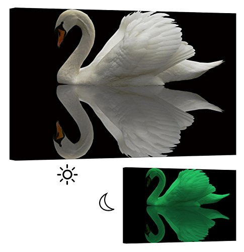 Outdoor Lighted Swans - 1