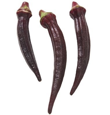 David's Garden Seeds Okra Red Burgundy D2665A (Red) 200 Open Pollinated Seeds