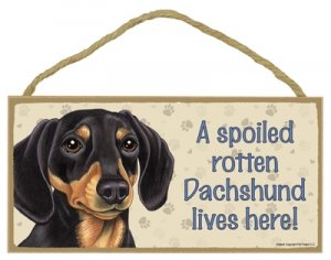 (Dachshund (blk/brn) - A Spoiled Rotten Dachshund Lives Here - Wooden Signs)
