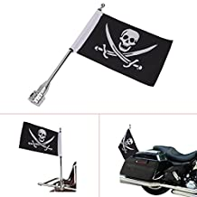 Kitty Party For Honda Goldwing CB VTX CBR Yamaha Harley Davidson Silver Rear Side Mount Flag Pole with Skull Flag Custom Motorcycle