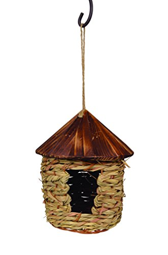 Songbird Essentials SE10355 Large Hanging
