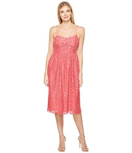 路地染料第[シーシー] CeCe レディース Aurora - Sleeveless Floral Lace ドレス [並行輸入品]