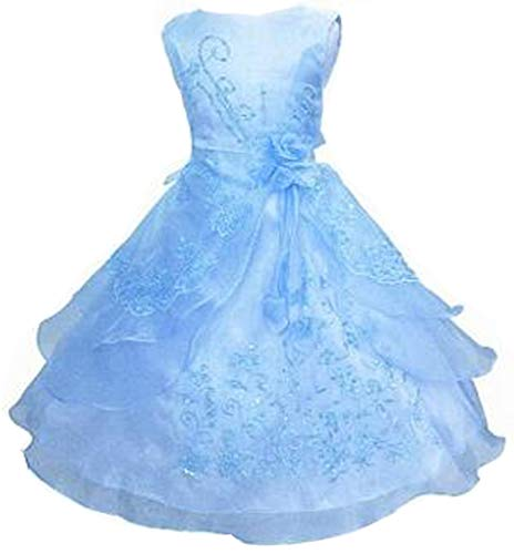 Shiny Toddler Little Girls Embroidered Beaded Flower Girl Birthday Party Dress with Petticoat 5t-6t(Tag 120),Babyblue]()
