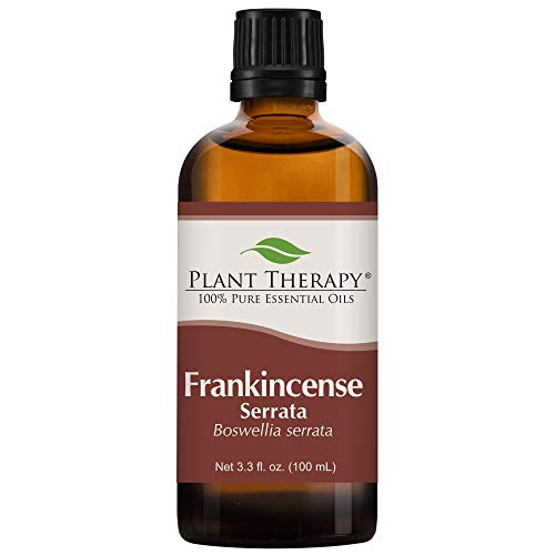 Plant Therapy Frankincense Serrata Essential Oil | 100% Pure, Undiluted, Natural Aromatherapy, Therapeutic Grade | 100 milliliter (3.3 ounce)