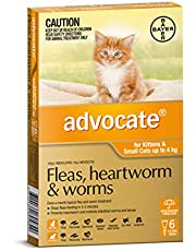 Advocate - Fleas, Heartworm and Worms Treatment for Kittens and Small Cats up to 4 kg, 6 Pack