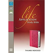 NIV Life Application Indexed Deluxe Edition Leather Bound