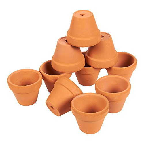 Set of 10 Small Terra Cotta Pots - Clay Flower Pots, Mini Flower Pot Planters for Indoor, Outdoor Plant, Succulent Display, Brown - 1 x 1.5 Inches (Pot Terracotta)
