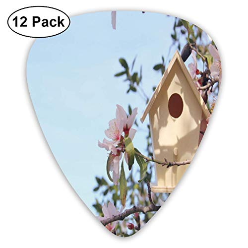Guitar Picks 12-Pack,Little Birdhouse On Cherry Blossom Tree Branch Springtime Sakura Blooming
