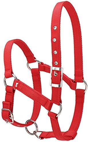 GCSEY El Engrosamiento De 6 Mm Montar Durable De La Cabeza De Caballo Collar Colgante De Caballos del Cuello Riendas del Caballo Jinete Que Cuelga del Cuello del Caballo Accesorios
