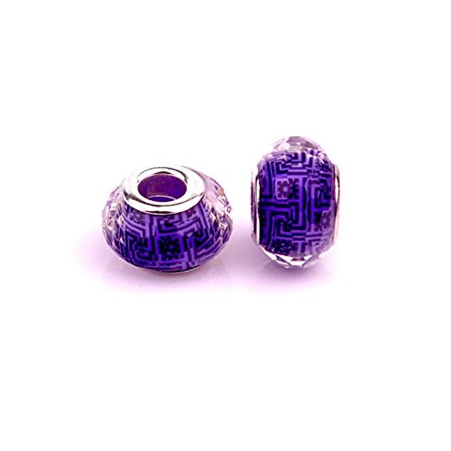 Ideas For European Costumes - Salome Idea 10PCS Rhinestone Charms, Large Hole Beads for European Style Bracelets, (Purple)