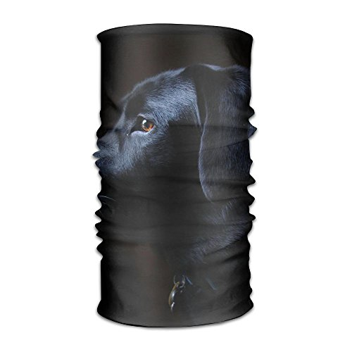 Owen Pullman Multifunctional Headwear Black Labrador Dog Head Wrap Elastic Turban Sport Headband Outdoor Sweatband