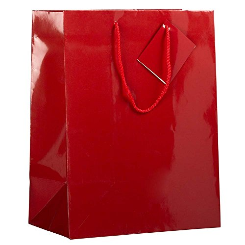 "JAM Paper Glossy Gift Bags with Rope Handles - Large - 10"" x 5"" x 13 - Red - Sold Individually"