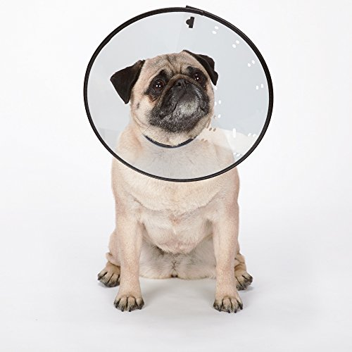 Total-Pet-Health-Elizabethan-E-Collar-for-Dogs-Surgery-Recovery-Collars