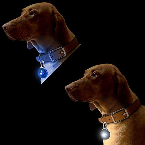 CampTeck-LED-Pendentif-de-Collier-Lumineux-Clignotant-Nuit-Scurit-pour-Chien-Animaux-avec-3-Mode-Dclairage