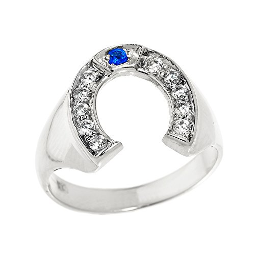 Men's 14k White Gold Blue Sapphire and White Diamond Lucky Horseshoe Ring (Size 16)