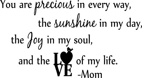 Wall Decal Quote You Are Precious in Every Way the Sunshine in My Day the Joy in My Soul and the Love of My Life Mom