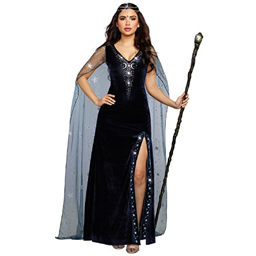 Dreamgirl Women's The Sorceress Dramatic Velvet Costume Gown, Navy Blue, Medium]()