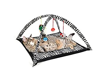 Cat Play Tent (Available in a pack of 1)  sc 1 st  Amazon.com & Amazon.com: Cat Play Tent (Available in a pack of 1): Toys u0026 Games