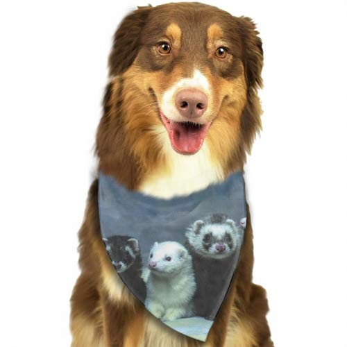 Cecil Beard Lovely Ferrets Pet Dog Cat Puppy Bandana Bibs Triangle Head Scarfs Accessories