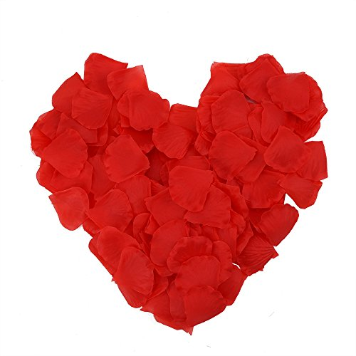 EBoot 1000 Pieces Silk Rose Petals Wedding Party Flower Favors (Red)
