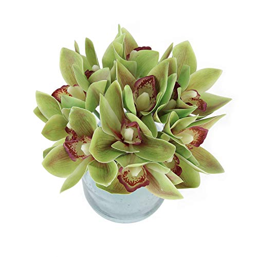 Blooming Paradise 2pcs Artificial Cymbidium Butterfly Orchid Silk Flower Home Wedding Phalaenopsis Bouquet Decor Green (Cymbidium Orchids Silk Green)