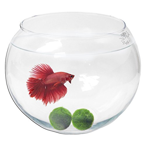 Collection Centerpiece Bowl - Luffy Incredibly Durable, Non Toxic Borosilicate Glass Marimo Bowl : Easy to Care for : Clear Bubble Bowl for Underwater Terrariums and Decorative Centerpieces