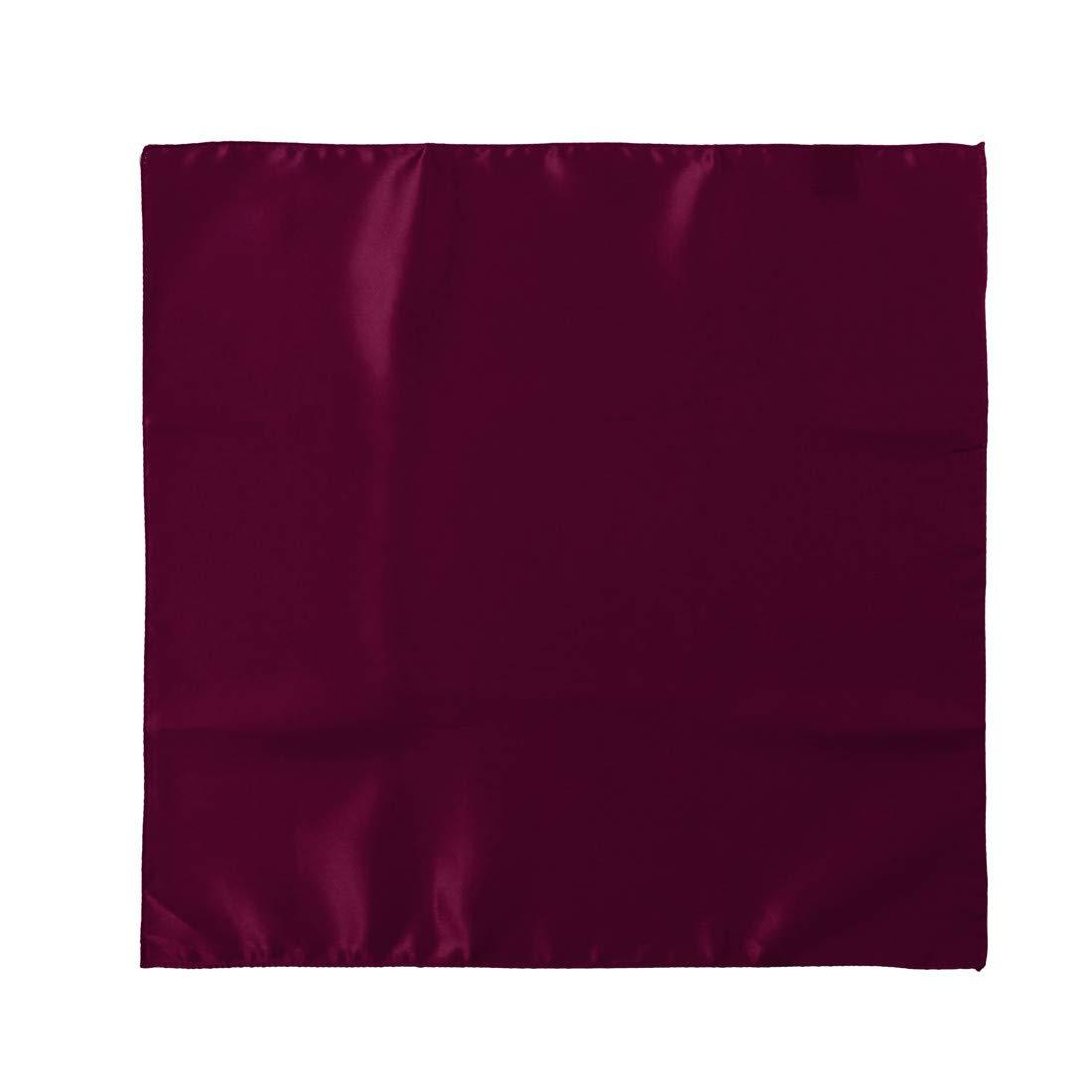 Dan Smith C.C.Y.E.001 Satin Mens Hanky Microfiber Formal Wear 5 Handkerchief Set