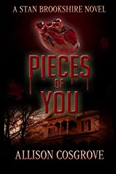 Pieces of You (Stan Brookshire Novels) (Volume 4)