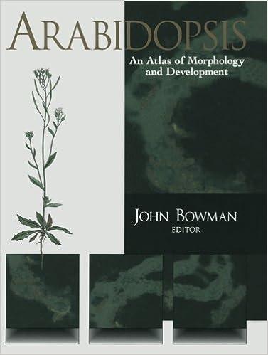 Laden Sie kostenlos Lehrbücher herunter Arabidopsis: An Atlas of Morphology and Development 1461276004 PDF