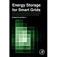 Energy Storage for Smart Grids: Planning and Operation for Renewable and Variable Energy Resources (VERs)