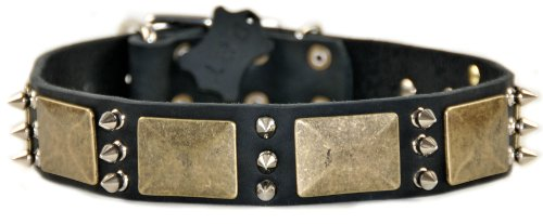 """Dean and Tyler """"BEAUTY AND THE BOLD"""", Dog Collar with Bra..."""