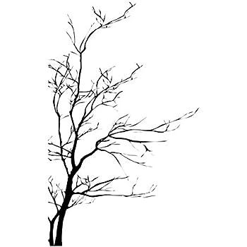 Amazon Com Stickerbrand Nature Vinyl Wall Art Tree Top