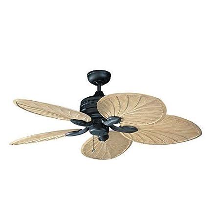 41bKl7YUe-L._SS450_ Best Palm Leaf Ceiling Fans