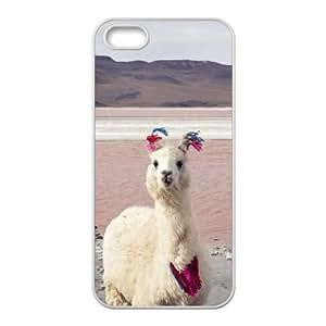 Lycase(TM) Alpaca DIY Cell Phone Case, Alpaca Iphone 5,5S Hard Back Case