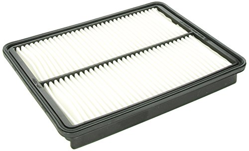 Genuine Hyundai 28113 2W100 Air Filter