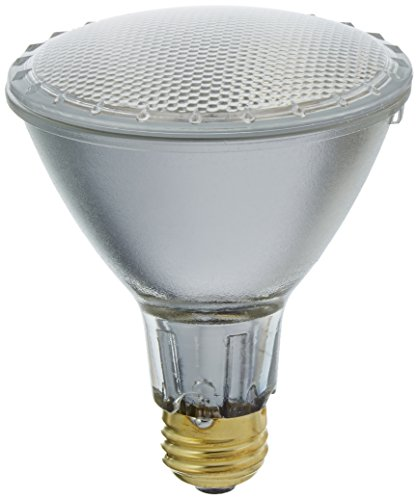 1000 lm bulb - 1