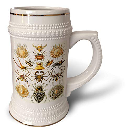 3dRose Made in the Highlands - Art- Spiders - Print of a series of spiders - 22oz Stein Mug (stn_307837_1)