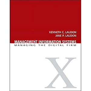 VangoNotes for Management Information Systems Audiobook