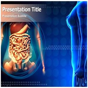 Amazon digestive system powerpoint template digestive digestive system powerpoint template digestive system powerpoint ppt template toneelgroepblik Image collections