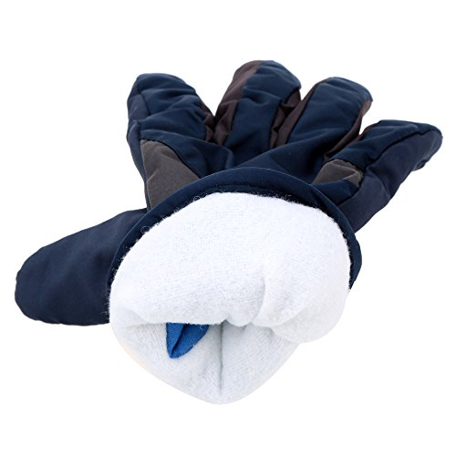 Skiing & Snowboarding Women Men Nylon Ski Gloves Snowboard Gloves Motorcycle Riding Winter Gloves Windproof Waterproof Unisex Snow Gloves