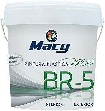 Pintura Plástica Mate BR-5 Antimoho. Con Conservante Antimoho-Antiverdín. Interior y Exterior. 14 Litros. Color Blanco