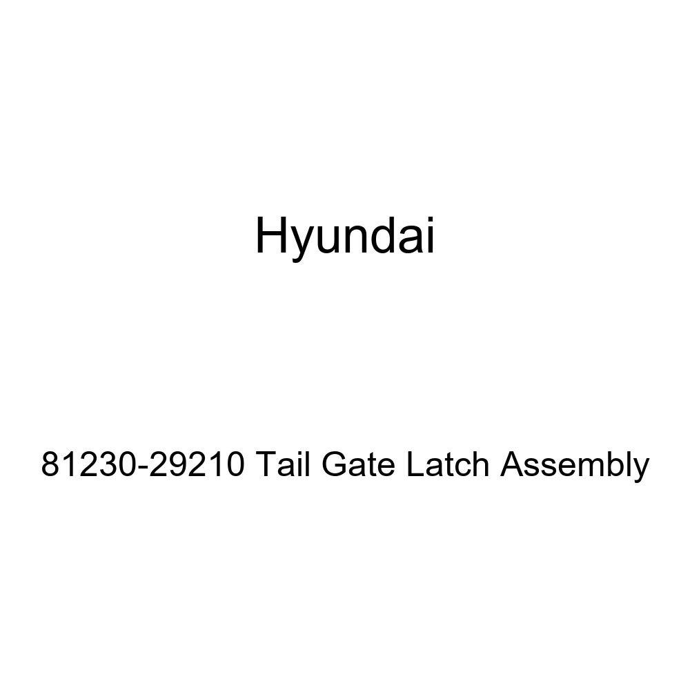 Genuine Hyundai 81230-29210 Tail Gate Latch Assembly