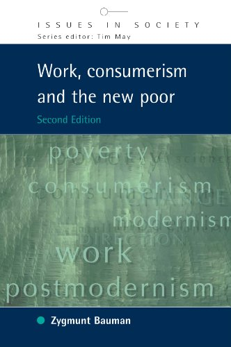 Work, Consumerism and the New Poor (Issues in Society)